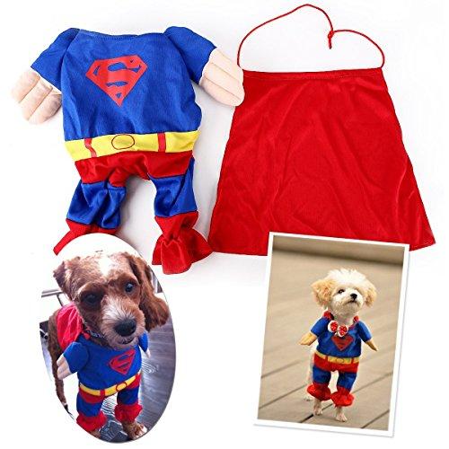 Traje de Supermán para perro. CálleseYCojaMiDinero.com